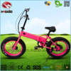 250W Fat Tire E-Bike Folding Electric Scooter En15194 for Sale