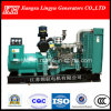 250kw/312.5kVA Electric Starter, Water-Cooled/ Diesel Generator, Factory Price