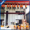 2 Ton Building Hoist Electric Double Chain Hoist with Trolley