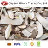 Top Quality Sliced Boletus Mushroom