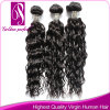 Different Types of Human Remy Curly Weave Hair (GP-BR-CL)