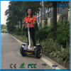 Stand up Electric Kick Scooter, 2 Person Electric Scooter 1500W