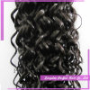 Best Water Wave Hair Weave Indian Naturally Curly Weave Hair