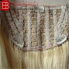 Top Grade Clip in Closure Human Hair