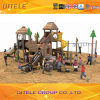 Outdoor Amusement Park Equipment Children Playground (2014NL-02901)