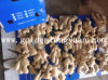 Whole Air Dry Ginger Packed with Carton for European Market