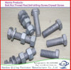 Grade 8.8 /10.9 DIN 933, DIN931 Hot DIP Galvanized Hex Bolt, GB5781, Dacromet