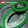 Gasket Spiral Wound Outer Ring Type