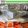 Chocolate Enrobing/Coating Machine (TYJ800)