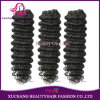 Top Quality Malaysian Virgin Hair Deep Wave Curly Human Natural Hair Extension