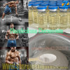Safe Nandrolone Decanoate Steroids Powder Deca for Bulking Cycle