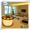 SMD5630 Outdoor Decoration LED Strip Light for Garden Decoration
