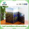 Saddle Stitch Art Paper Offset Printing Brochures/Leaflet
