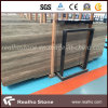 Italy Unfilled Persian Silver Travertine Slab for Marble Wall