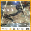 2cm Thick Luxury Forest Back Light Onyx for Background Wall