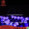 LED Decorating Diamond Shell Light String for Christmas Decorative Light