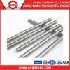 Ss304 Ss316 Thread Rod DIN976 DIN975