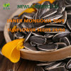 Export The Most Popular Sunflower Seeds 5009 to World