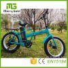 Front&Rear Tektro Disc Brake Ebike 36V 250W Folding Electric Bike