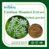 Hearbal Extract Osthole Powder Cnidium Monnieri Extract