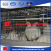 Good Quality Automatic Brolier Chicken Cage Poultry Farm Equipment