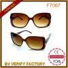 Fashion Sunglasses with Square Frame China Wholesale