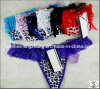 Women Cotton Many Color Size Sexy Underwear Ladies Panties