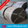 Mould/ Cut Edge Rubber Ep Fabric Conveyor Belt (EP100-600)