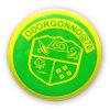 Offset Print Badge, Organizational Lapel Pin (GZHY-OP-023)