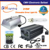 UL Approved 315W CMH Ballast with LED Grow Light for Gardening