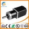 11HY3401-PG139 NEMA11 Circular Geared Stepper Motor for IP Camera