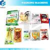 Vacuum Packing Machine for Big Bag (DZQ-600OL)