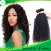 New Wholesale Factory Price Natural Afro Kinky Human Hair