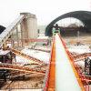 Conveyor Handling Machinery / Belt Conveyor / Conveyor System