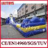 Best Selling Super Adult Inflatable Hippo Slide, Water Slide for Sale (V-HP-047)