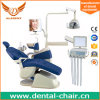Gladent Fashion Design Dental Chair Unit with Real Leather Cushion