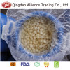 Top Quality Salted Peeled Garlic with Good Price