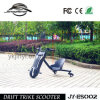 Cheap Electric Scooter 100W 12V for Sale