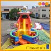 Outdoor Playground Space Combo Inflatable Slide for Sale (AQ118)