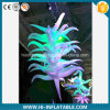 Best-Sale Wedding Event Use Inflatable Star Decoration