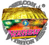 Thunder Nation 49 Shots Fan Cake Fireworks/High Quality with The Best Price