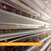 China Factory Direct Sell Price Cages For Laying Hens