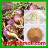 Factory Direct Supply Natural Plant Extracts Maca Extract