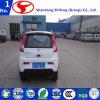 China Small Electric Vehicle/Car