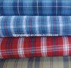 Yarn Dyed Cotton Woven Poplin Plaid Fabric (LZ5878)