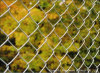 Manufacturer PVC Coated Diamond Wire Mesh Fence (CLF004)