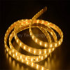 SMD High Lumen LED Rope Light LED Strip (220V/110V)