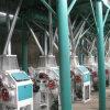 Flour Mill Equipment (6FTS-19 for wheat/maize/corn)