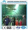 Acrylic Flesh Tunnel