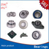 All Kinds of Ball Bearings, Roller Bearings and Auto Bearings (OEM SKF, TIMEKN, KOYO, NTN FAG)